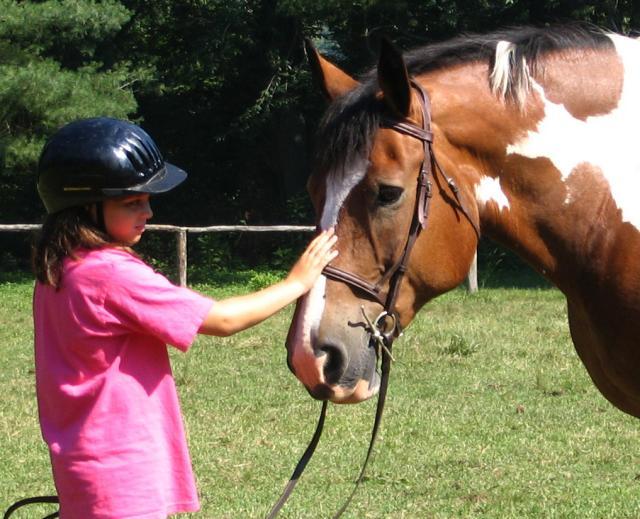 Girls Horse Equestrian Camp