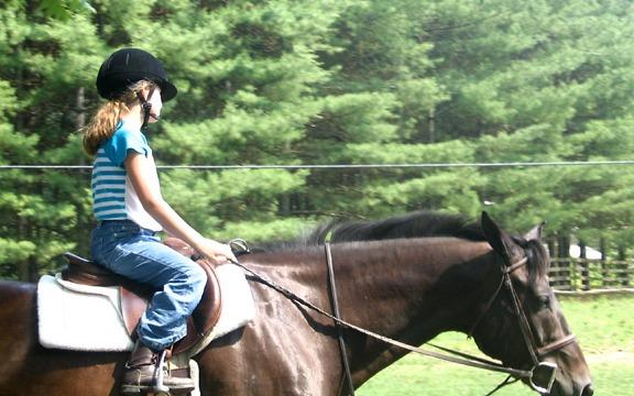 NC Equestrian Camp