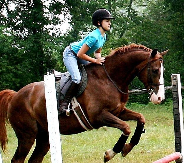 Equestrian Camp for Kids   Rockbrook Summer Camps
