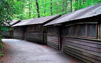All Girl Camps Cabin Row