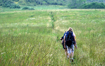 Kids Hiking Through Field