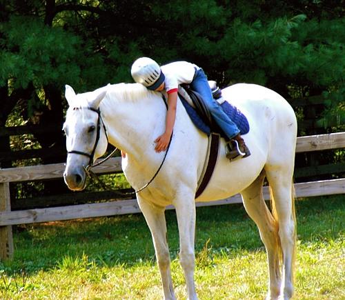Horse Riding Girl Summer Camp