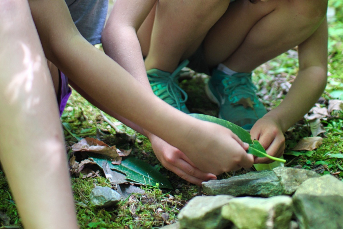 Girls hands holding leaves in nature