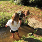 Kids having fun while playing in a creek at camp