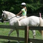 Riding Equestrian Girls Camp
