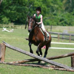 Girl horse camp jumping cross rails