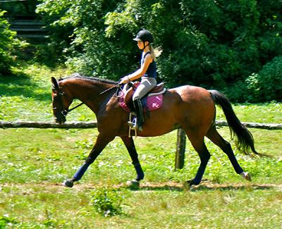 Girl Horseback Riding Horse