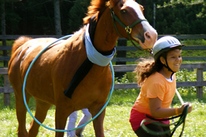 Fun Equestrian Camp Game
