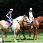 summer camp horse riding lesson