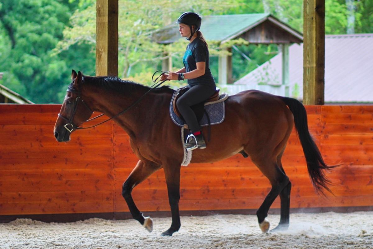 Horse Teenager