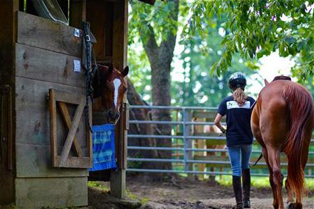 Camp horse barn