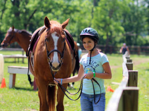 Sunny Horse Girl