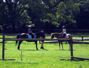 Camp horseback riding lesson for girls
