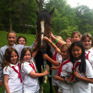 Camp horse named Hula Hoop