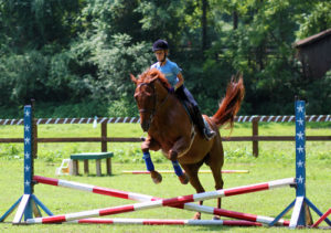 Advanced Horse Camp Girl