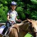 Beginning horseback riding girl