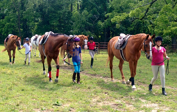 Horse Camp Riding Class