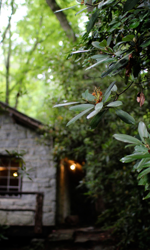 Summer Camp Lodge