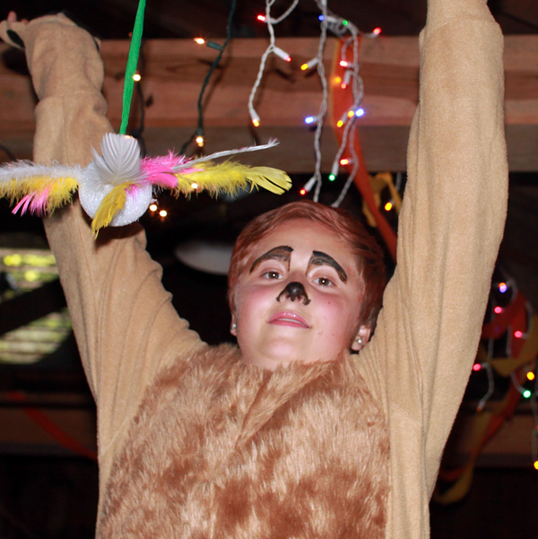 Meerkat Kid Costume