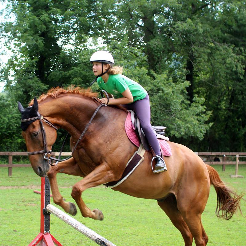Horse Jumping Girl at Summer Camp