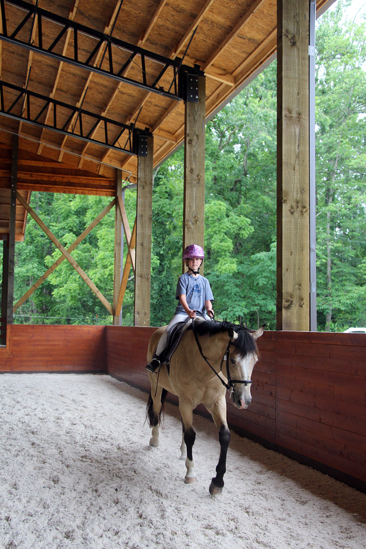 Horse Arena Rider