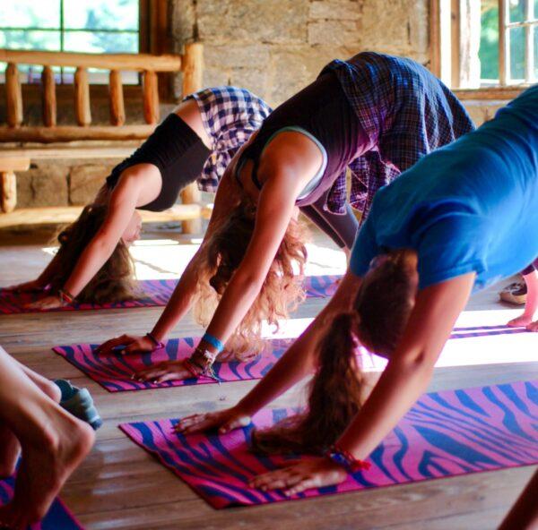 yoga girls downward dog pose