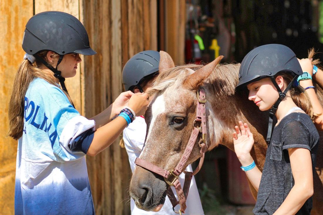 horse caring camp girls