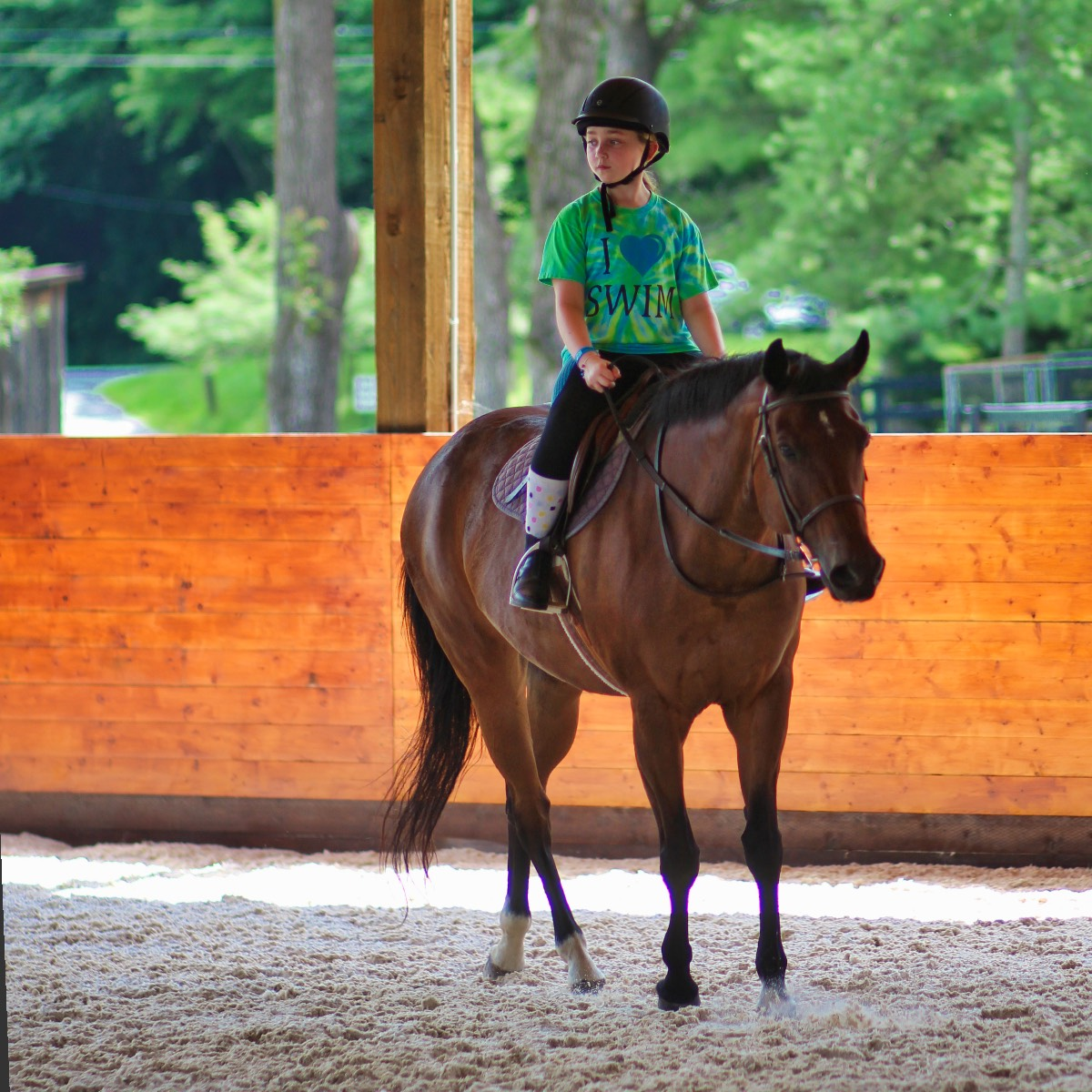 young girl horse riding