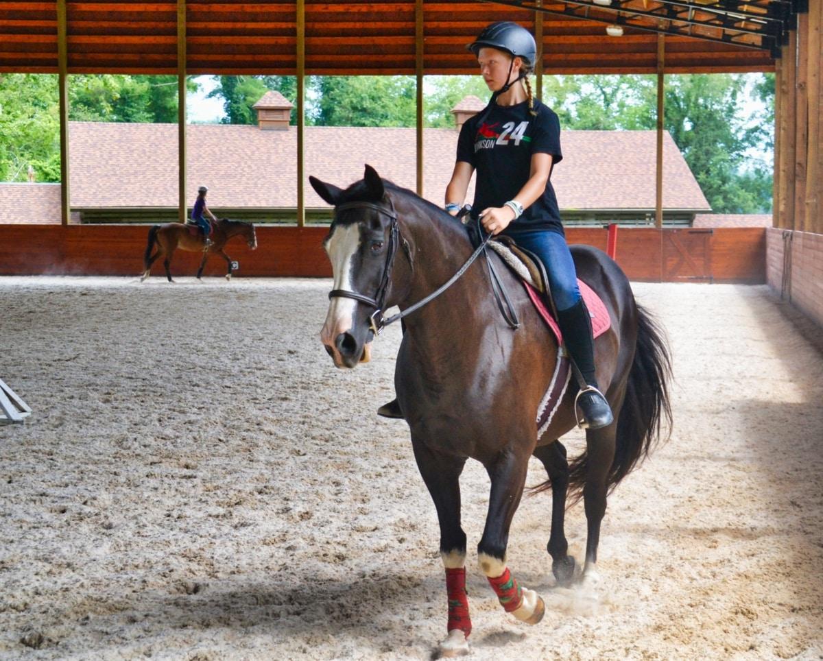 horse riding camper girl