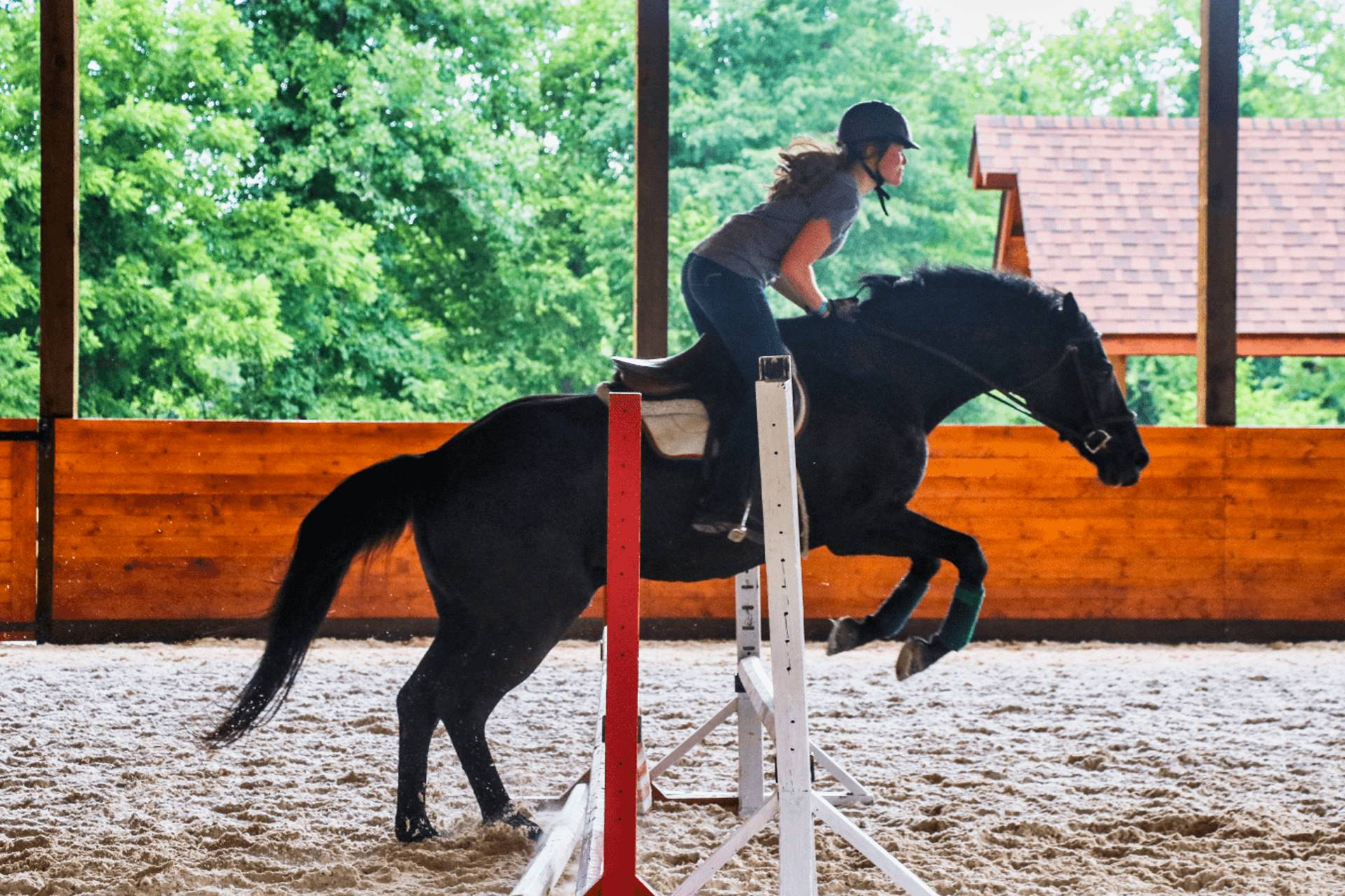 camp horse girl jumping
